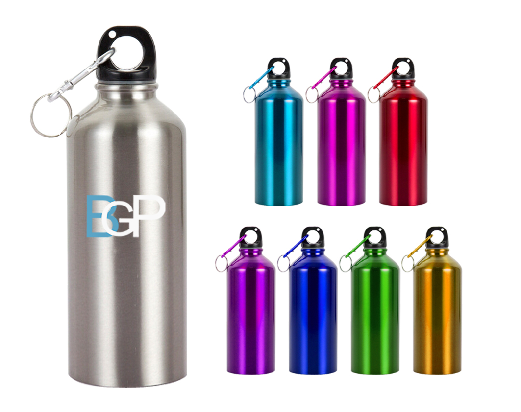 Stainless Steel Custom Logo Sports Water Bottle With Carabiner 20Oz
