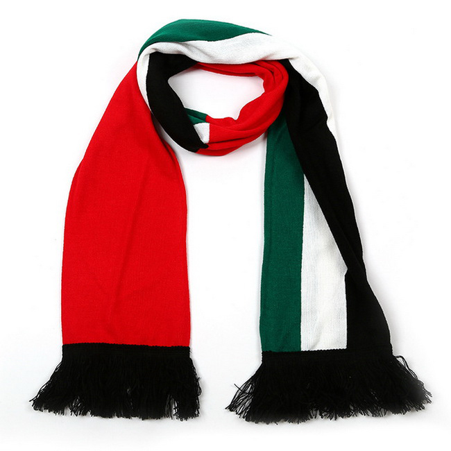 Multicolor Knit Scarf With Fringe